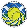 DCM Medal -Softball Decagon Medal Awards