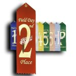 Field Day - 2nd Place Ribbon Peaked Top Award Ribbons