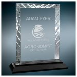 Rectangle Clear Premier Accent Glass Award on a Black Base Sales Awards