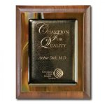 Brown Metallic Fusion Square Rectangle Awards