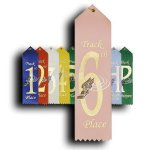 Track - 6th Place Ribbon Track Trophy Awards