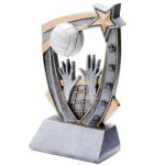 3D Resin Volleyball Volleyball Trophy Awards